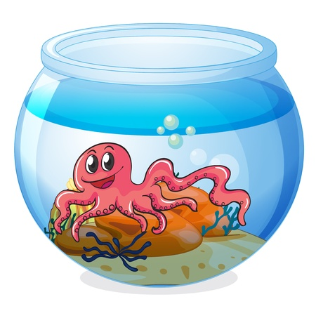 Illustration of an octopus inside an aquarium on a white background Stock Vector - 18549526