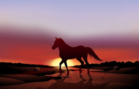 Illustration of a sunset at the desert with a horse Vector