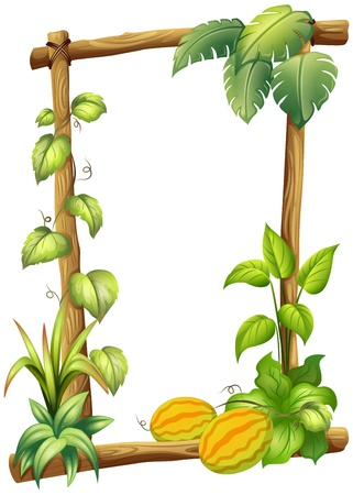 pic  picture: Illustration of a wooden frame with plants on a white background