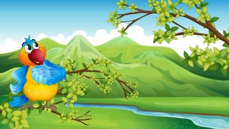 aves caricatura: Ilustración de un loro en frente de la alta montaña