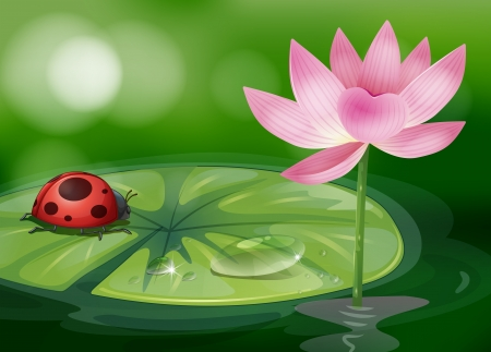Illustration of a waterlily with a red bug Vectores