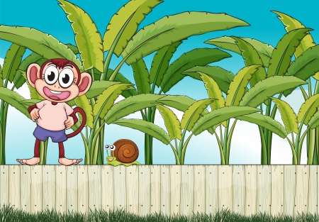 apes: Illustration of a monkey and a snail above the fence