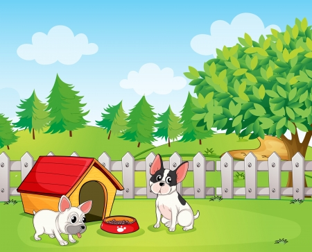 Illustration of a backyard with two dogs Illustration