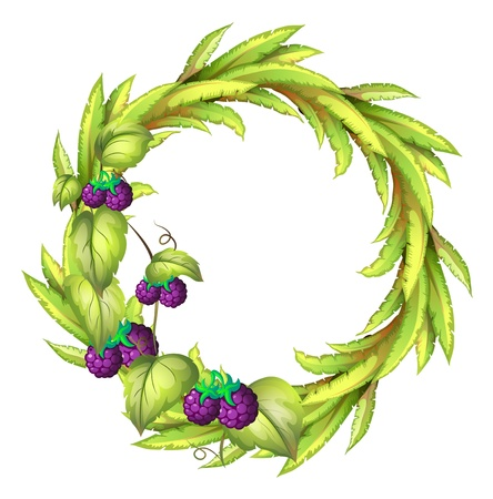 round: Illustration of a round frame with violet berries on a white background Illustration