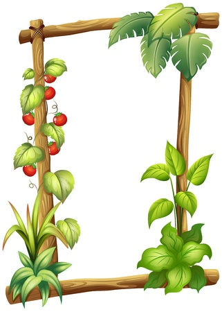 vine border: Illustration of a frame with plants on a white background