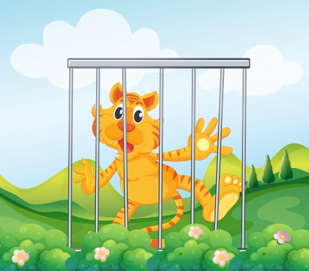 Illustration of a caged tiger Stock Vector - 18607693