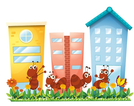 Illustration of the ants at the garden in front of the high buildings on a white background Vector