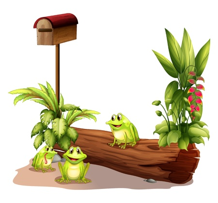 Illustration of the three frogs near the wooden mailbox on a white background Vector