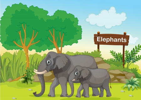 Illustration of the two gray elephants near a wooden signage Stock Vector - 18610747