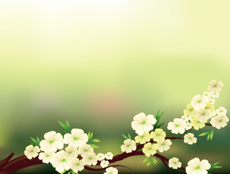 art supplies: Illustration of a stationery with fresh white flowers