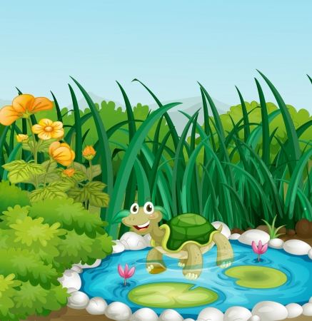 Illustration of a turtle in the pond with waterlilies Illustration