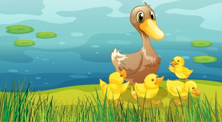 baby duck: Illustration of a duck and her ducklings at the riverbank