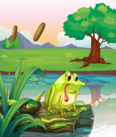 droopy: Illustration of a lonely frog above the wood with algae