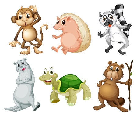 Illustration of the six different kinds of wild animals on a white background Vector