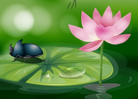 Illustration of a bug above the waterlily Stock Vector - 18662382