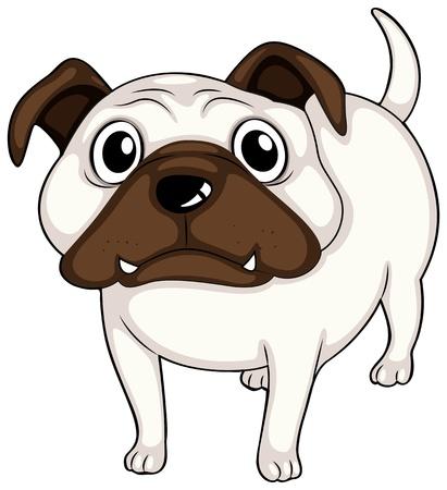 Illustration of a white bulldog on a white bakground  Vector
