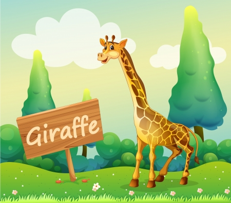 Illustration of a wooden signboard beside a giraffe Stock Vector - 18716620