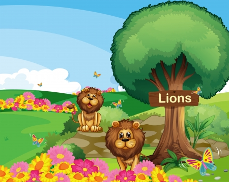 Illustration of the two lions in the garden with a wooden signboard  Stock Vector - 18716858