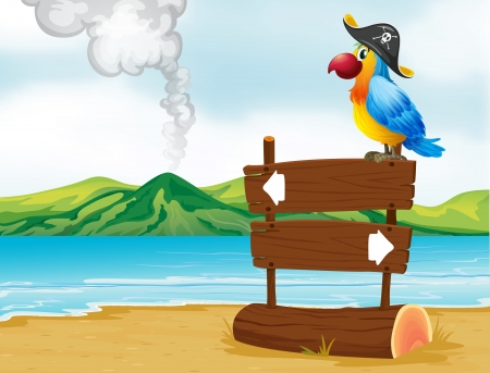 wooden hat: Illustration of a parrot with a pirate hat above the wooden signboard Illustration