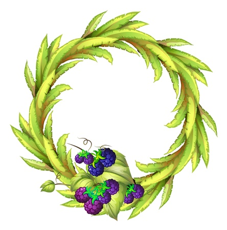 Illustration of the violet berries at the bottom of a leafy round border on a white background Vector