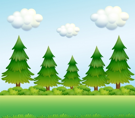 Illustration of the green pine trees Vector