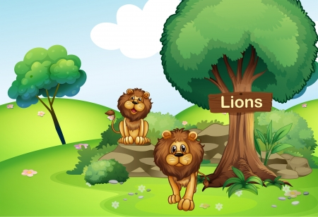 Illustration of the two lions at the forest with a wooden signboard  Vector