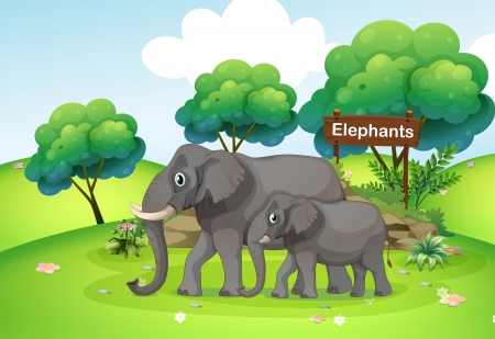 baby on board: Illustration of a small and a big elephant