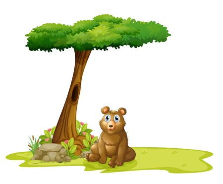 Illustration of a tree with a hollow at the back of a bear on a white background Vector