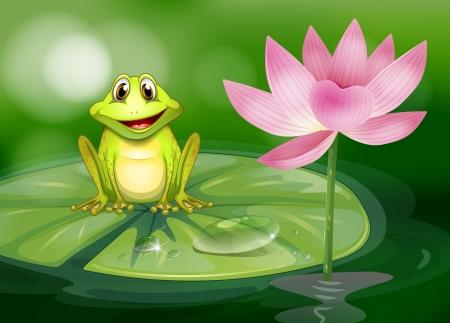 ochtend dauw: Illustratie van een kikker naast de roze bloem bij de vijver