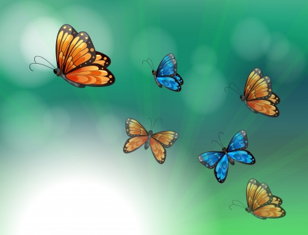 Illustration of a stationery with orange and blue butterflies Vector