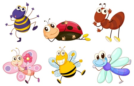 Illustration of the different bugs and insects on a white background Vector