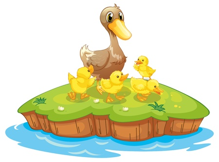 Illustration des cinq canards dans une île sur un fond blanc