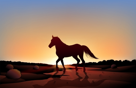 Illustration of a horse in a sunset scenery at the desert Vector