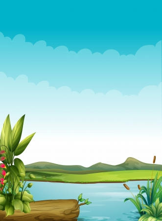 pond water: Ilustration of a river with plants and a wood Illustration