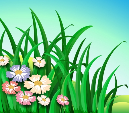 grass blade: Illustration of the green plants with colorful flowers