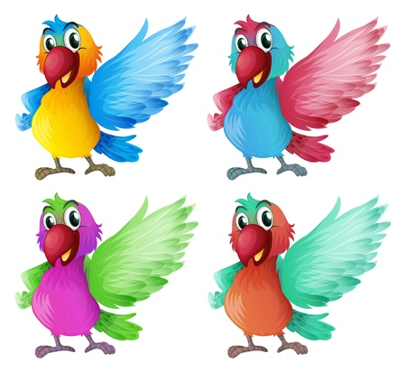 Illustration of the four adorable parrots on a white background Stock Vector - 18840252