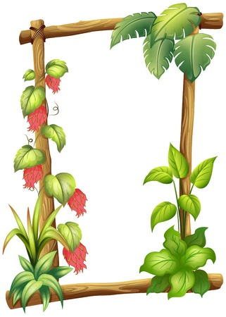 Illustration of a frame made of wood with vine plants on a white background