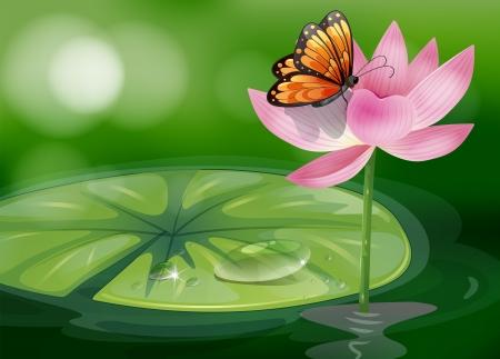 sip: Ilustraci�n de una mariposa en la parte superior de una flor rosada
