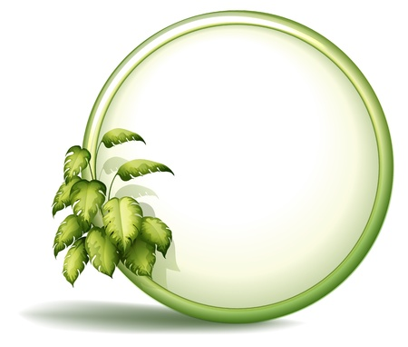 beautification: Illustration of a round empty template with plants on a white background