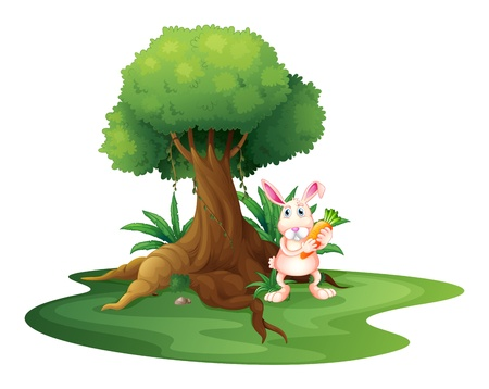 root vegetables: Illustration of a rabbit with a carrot near the big tree on a white background