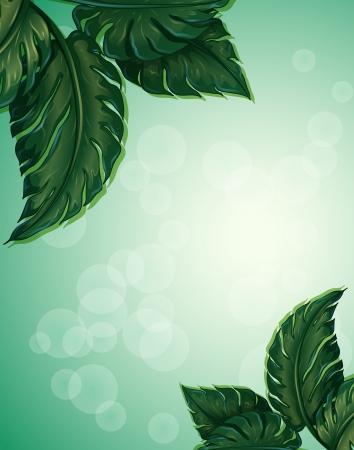 puntig: Illustratie van een speciaal papier met grote puntige bladeren