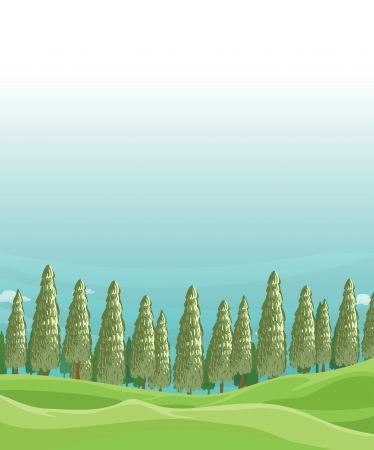 Illustration of a field with pine trees