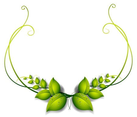 pointy: Illustration of a simple leafy border on a white background