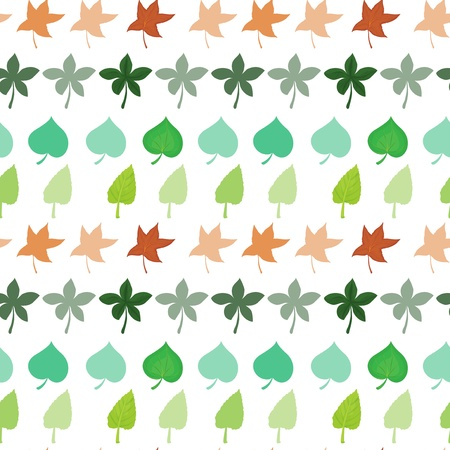 pointed: Illustration of the different kinds of leaves on a white background Illustration