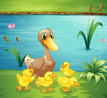 Illustration of a mother duck with her ducklings in the river Vector