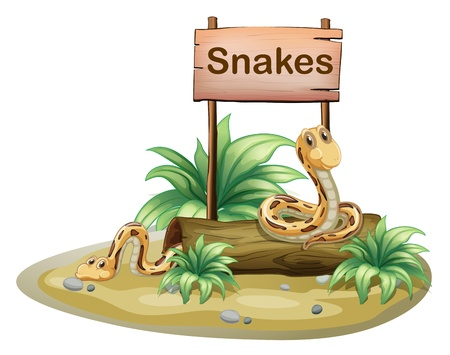 wooden post: Illustration of a wooden signboard with snakes on a white background Illustration