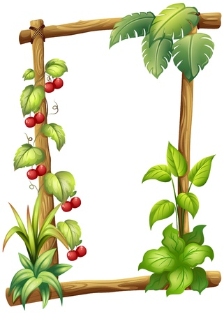 Illustration of a frame made of wood with vine plants on a white background Stock Vector - 18983723