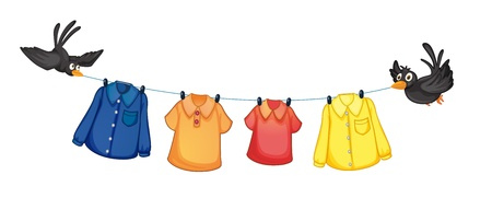 wet clothes: Illustration of the four different clothes hanging with birds on a white background