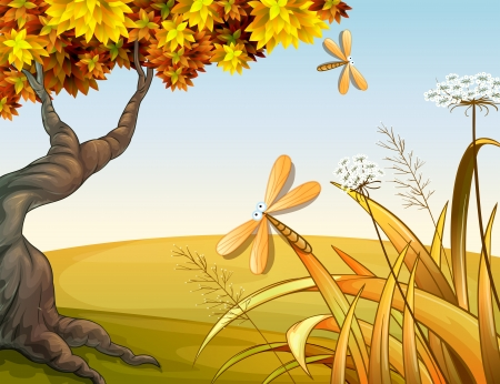 Illustration of dragon flies in the autumn hill