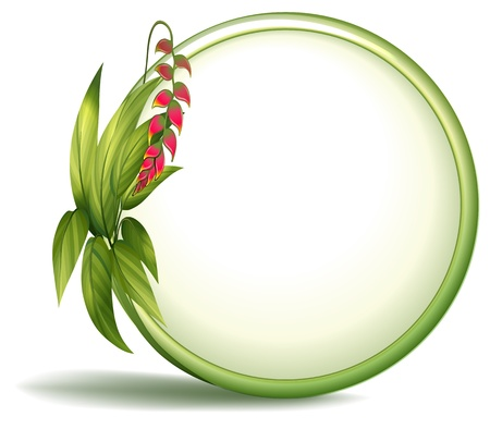 elongated: Illustration of an empty circle border with elongated leaves on a white background